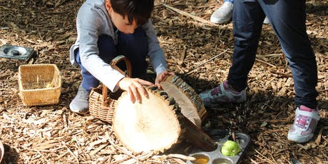 Identifying and supporting STEM for young children outdoors. tickets