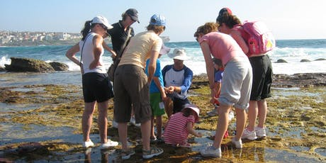 Rockpool Ramble at South Maroubra tickets