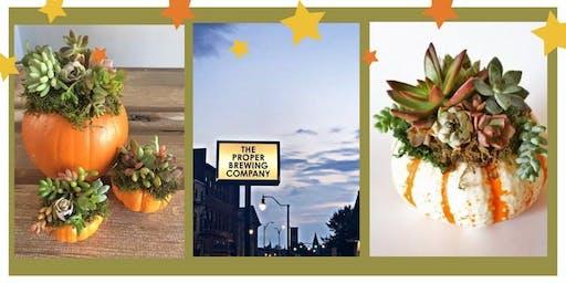 Pumpkin Succulent Centerpiece Workshop
