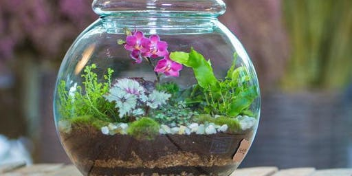 Terrarium Building with Tovah Martin