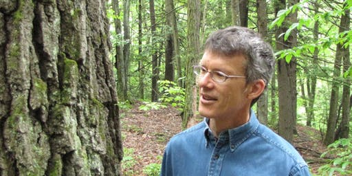 The Growth of Trees: A Journey Through Time with Michael Wojtech