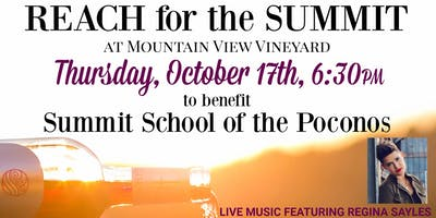 Reach for the Summit Charity Event at Mountain View Vineyard