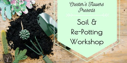 Soil & Re-potting II