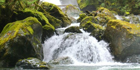 Fat Girls Hiking, Vancouver Island:  Rosewall Creek Loop tickets