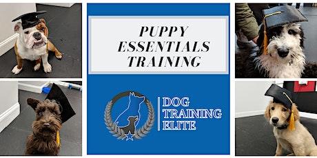 Puppy Essentials Training Class (4 weeks)  tickets