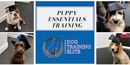 Puppy Essentials Training Class (4 weeks)