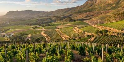 Wines of Lebanon and Georgia - with Sommelier Josh Voytek