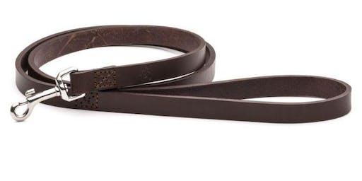 Intro to Leatherwork: Dog Leash and Collar