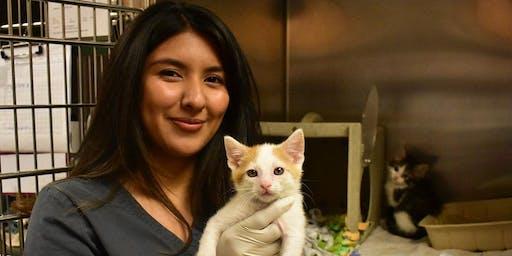 Animal Adventurers Workshop: Careers in Cat Care (Kids 8-12)