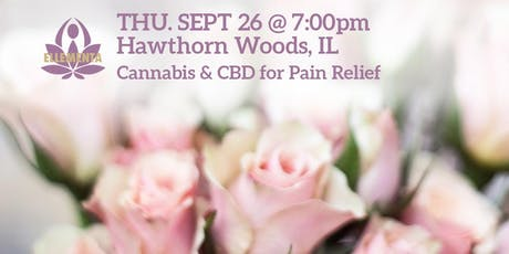 Ellementa Hawthorn Woods: Cannabis and CBD for Pain Relief tickets