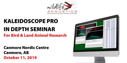 Kaleidoscope Pro for Bird & Land Animal Research, Canmore: Oct 11