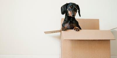 OUT OF THE BOX! - Neue Impulse für die Arbeitswelt von Morgen