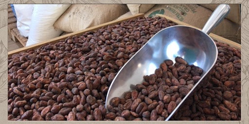 Chocolate Making from Cocoa Beans to Chocolate Bar - Masterclass