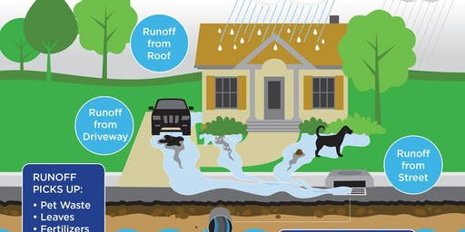 Stormwater For Environmental Challenges