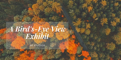 A Bird's-Eye View: Opening Reception at Be Studios