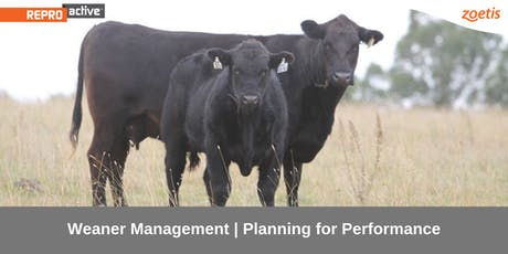 ReproActive Central West: Weaning Management - Planning For Performance tickets