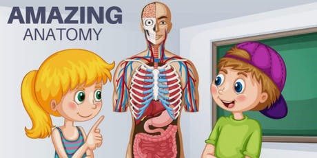 Amazing Anatomy - Kids Workshop @ The Herd tickets