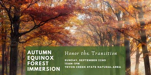 Autumn Equinox Forest Immersion