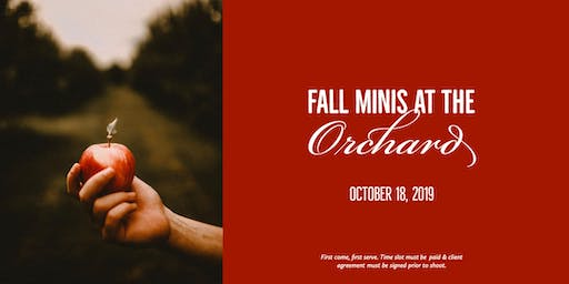 Fall Minis at the Orchard