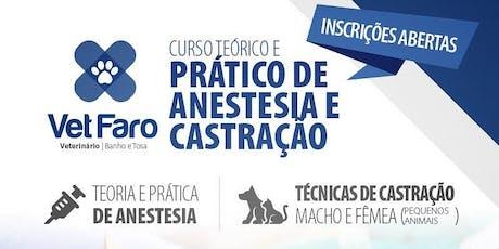CURSO DE EXTENSÃO - Anestesia e técnica cirúrgica de OSH e Orquiectomia ingressos