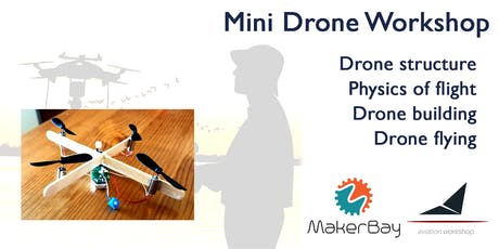 Mini Drone Workshop tickets