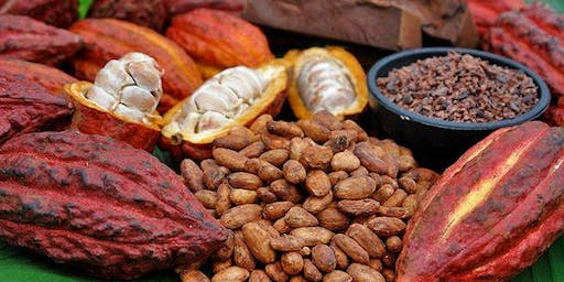 Sacred New Moon Cacao Ceremony