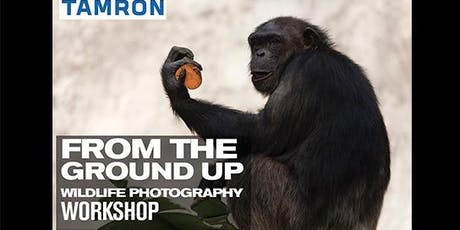 Tamron Wildlife Photography Workshop tickets