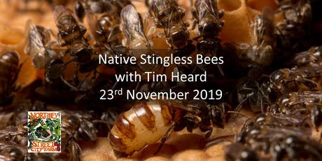 Native Stingless Bees with  Tim Heard tickets