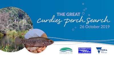 The Great Curdies Perch Search