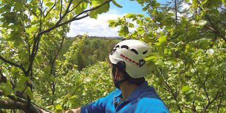 Roped Tree Climbing Experience 27-OCT-2019 tickets