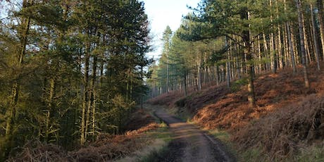 Cannock Chase Classic tickets