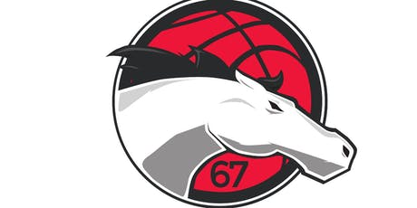 Leicester Riders Vs Cheshire Phoenix (BBL Cup) tickets