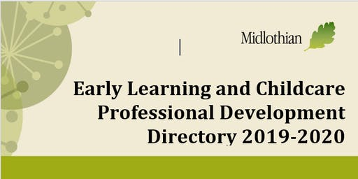 Professional Update – The Adult Role (Private & Voluntary Sector Staff)