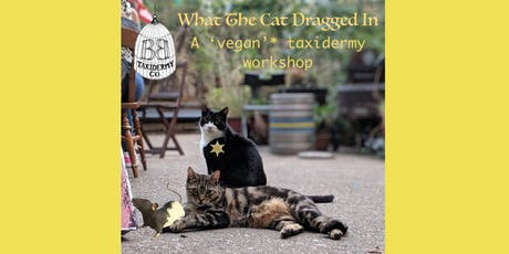 What  The  Cat  Dragged  In  -  a 'vegan'* taxidermy workshop tickets