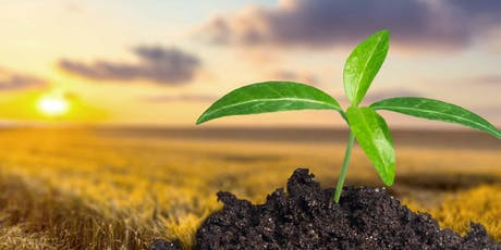 Improving plants: Achieving food sustainability in a changing environment tickets