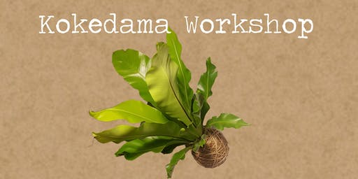 Kokedama Workshop by Rock Leaf Moss @ Port Fairy