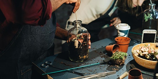 Third Thursdays: Make a tinyjohn terrarium