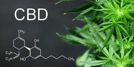 CBD 101 - Inflammation