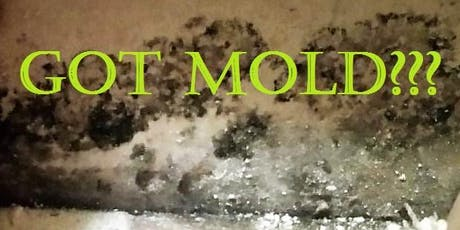 What Realty Professionals Should Know About Mold tickets