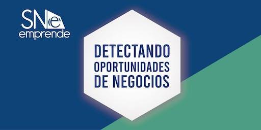 SN EMPRENDE 2019 -  DETECTANDO OPORTUNIDADES DE NEGOCIOS