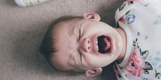 Taming the Beast: Toddlers and Tantrums