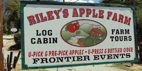 CVASA Teen Social Group: Apple Picking