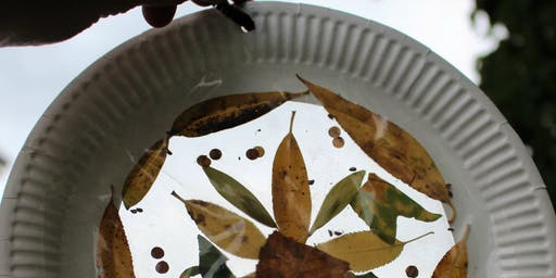 LHS: Celebrate Autumn Equinox with Nature Suncatchers!