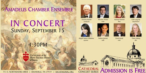 Cathedral Concert: Amadeus Chamber Ensemble