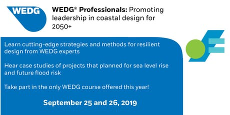 WEDG Professionals Course tickets