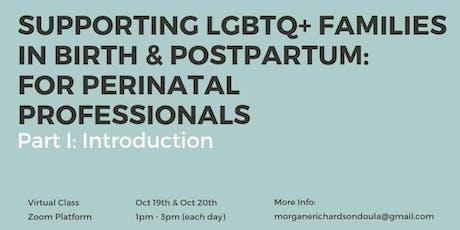 Supporting LGBTQ+ Families in Birth & Postpartum (Virtual Class)  tickets
