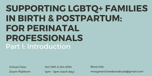 Supporting LGBTQ+ Families in Birth & Postpartum (Virtual Class)