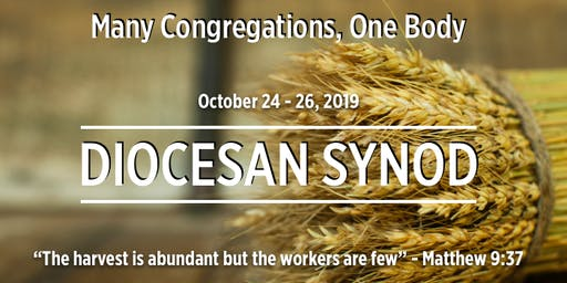 Diocesan Synod 2019