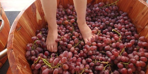 Hopwood's Big Grape Stomp