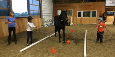Teamwork - Equine Assisted Learning Session @Dreamwinds tickets